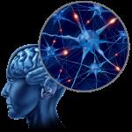 Brain Trauma in Children (Pediatric Concussions)